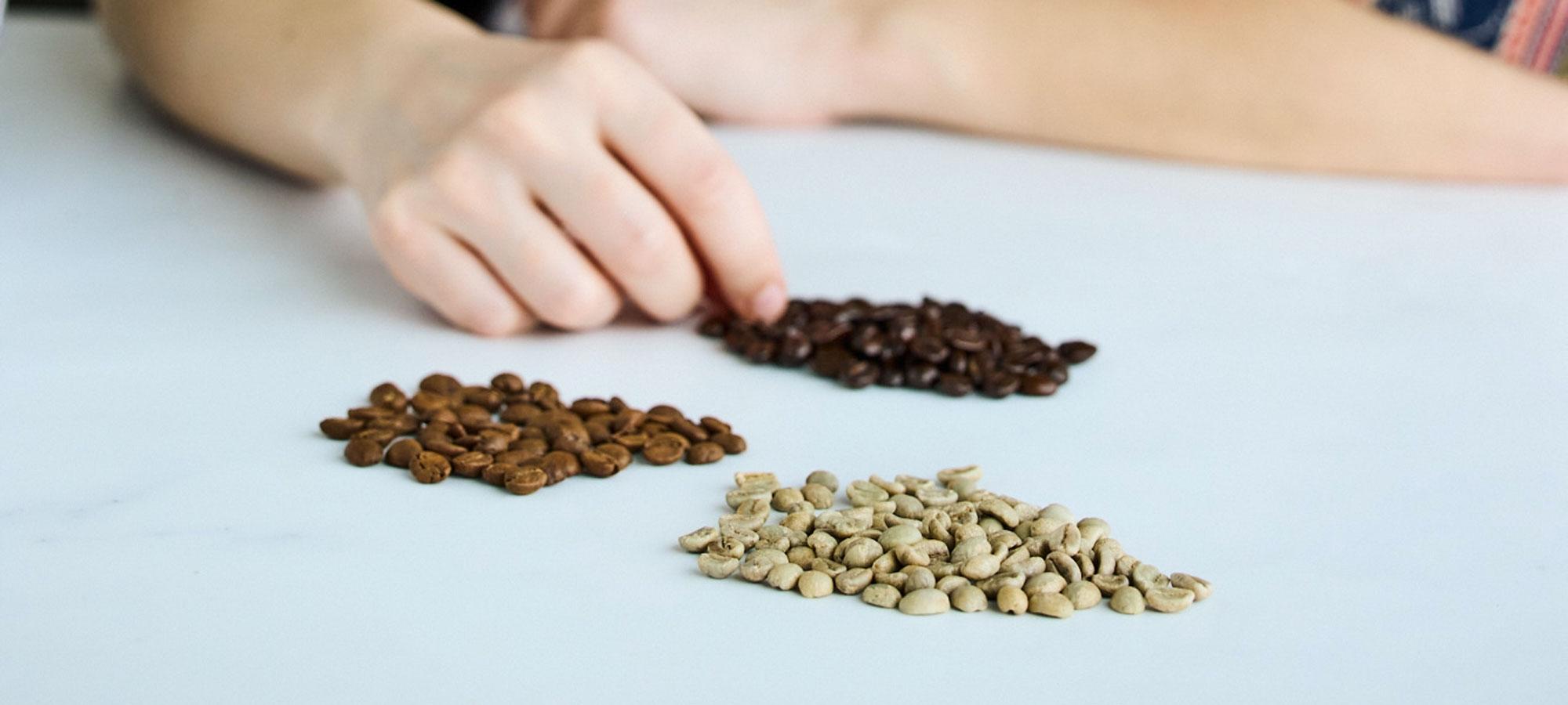 Miten uusia kahvimakuja lanseerataan markkinoille? Pauligin Inkun blogissa käydään läpi pääpiirteittäin kahvin tuotekehitysprosessi