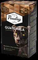 Origins Blend Guatemala