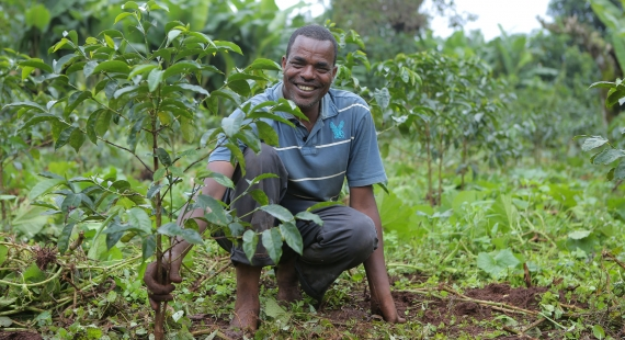Harnessing the collective power for the bright future of coffee